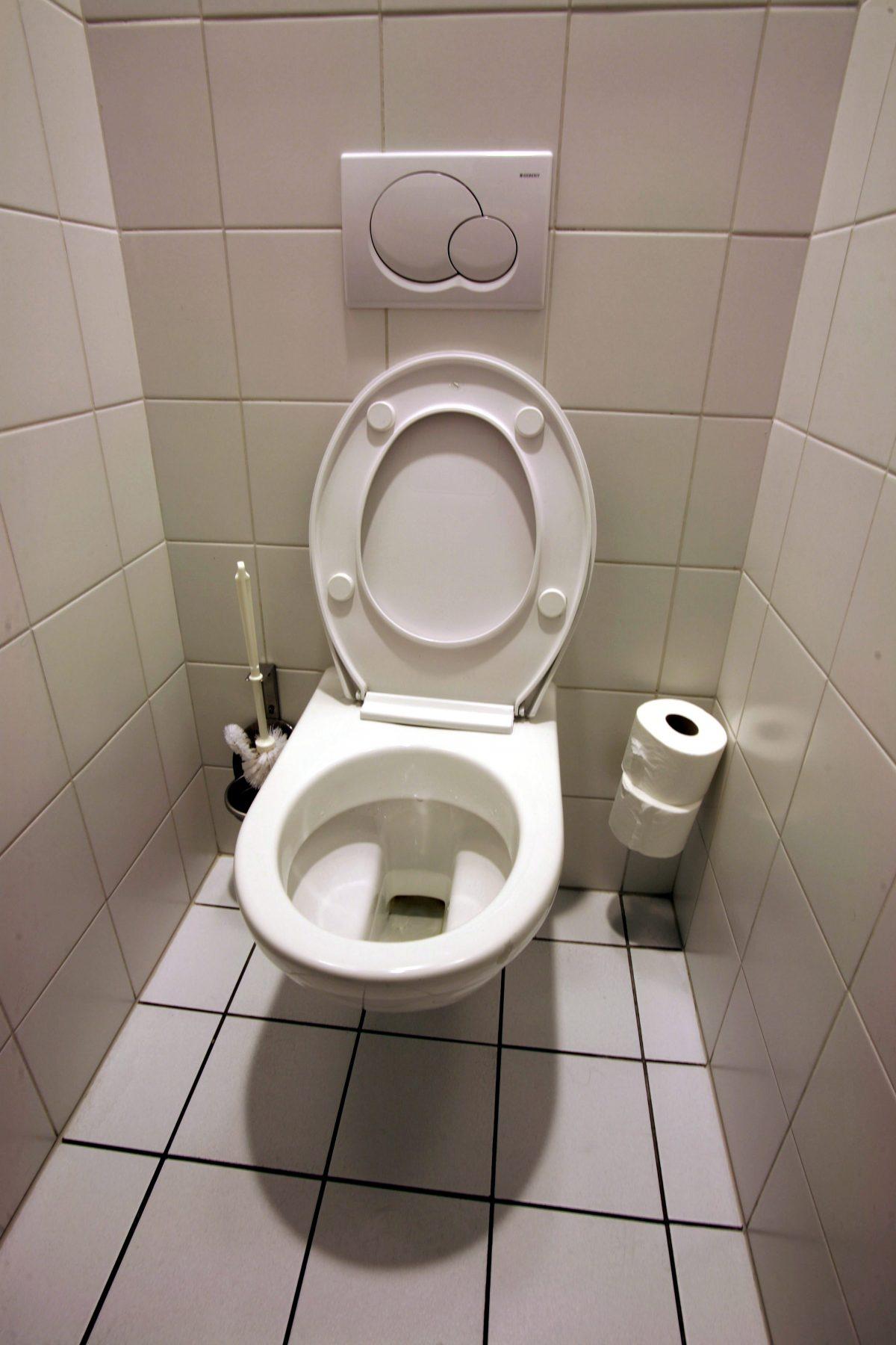 poser des toilettes