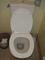 Installer Un Toilette