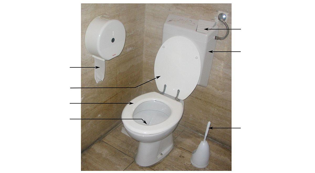 Toilette Dictionnaire